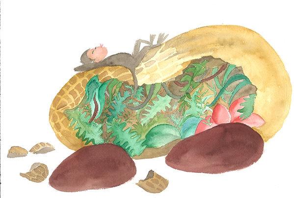 Illustration Conte de la jungle