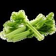 Céleri branche utilisé en diététique ou diétothérapie à AcuGaelle à Acupuncture Prilly