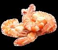 Crevettes utilisées en diététique ou diétothérapie à AcuGaelle à Acupuncture Prilly