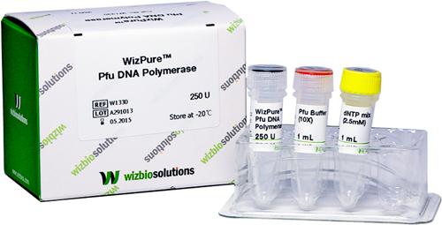Pfu DNA Polymerase