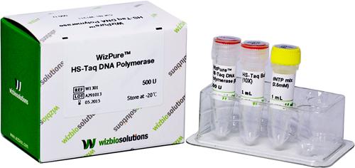 HS-Taq DNA Polymerase