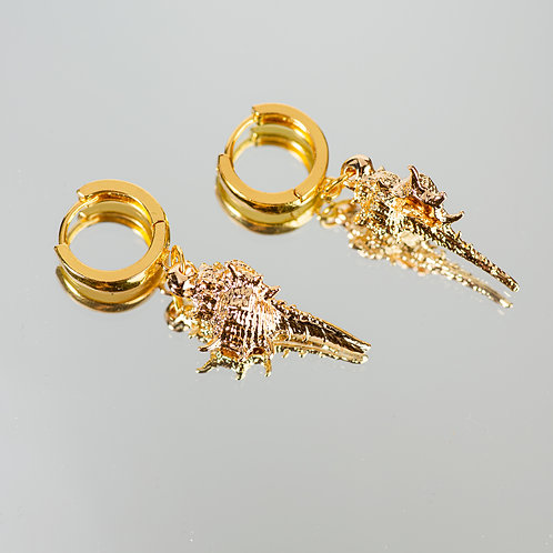 Golden Treasure Seashell Earrings