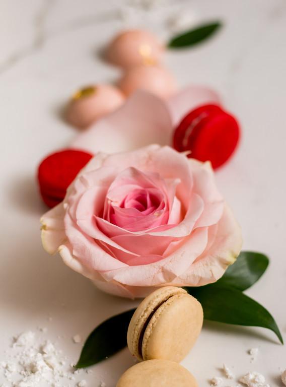 Macarons and roses.jpg
