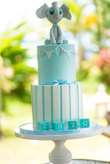 Blue & White Baby Shower Cake featuring Edible Elephant