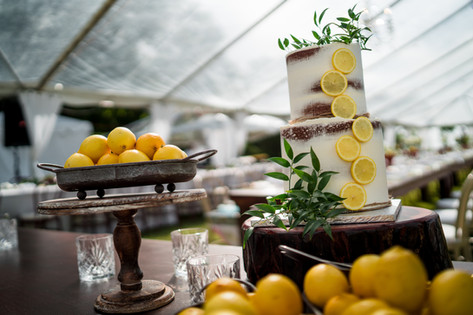 'When Life Gives You Lemons!'-Two Tier Semi-Naked Wedding Cake featuring Lemon Slices and Foliage