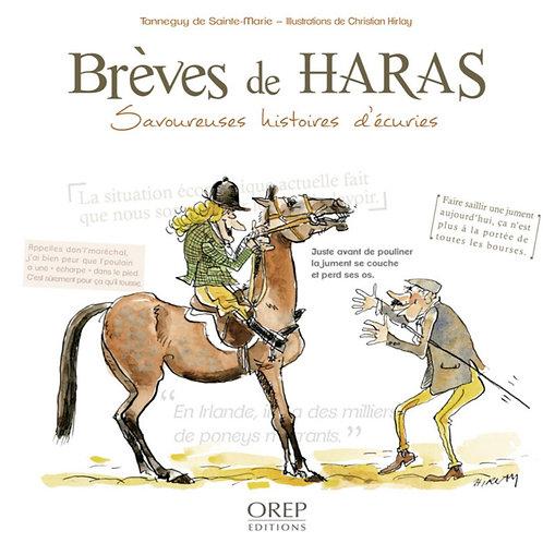 Brèves de Haras