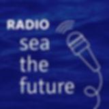 logo_radioSTF_BD.jpg