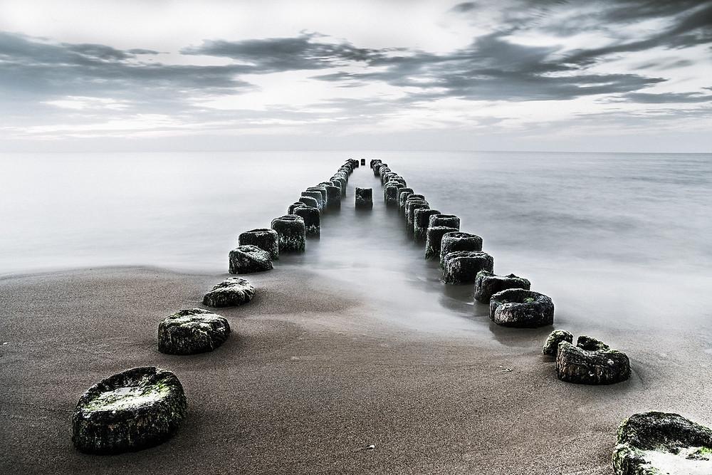 Image by Henryk Niestrój from Pixabay