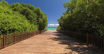 75ParadisusPlayaDelCarmen-Beach_Access.j