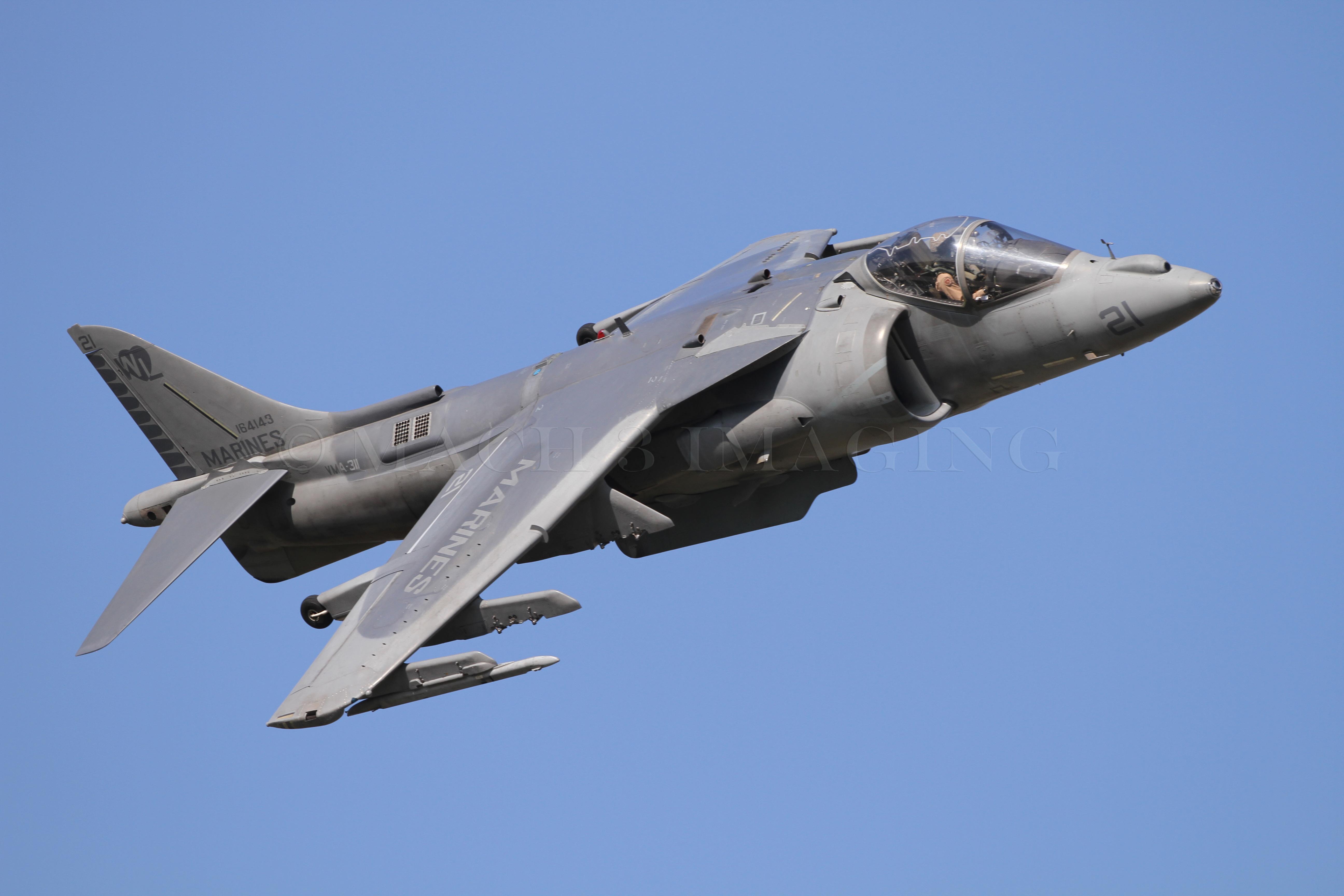 Harrier_ST_0093 copy