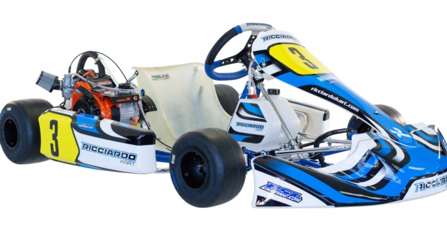 LO206 / 4 Cycle Arrive & Drive: 12 & up, Briggs Lo206 engine, 10hp / (55mph)