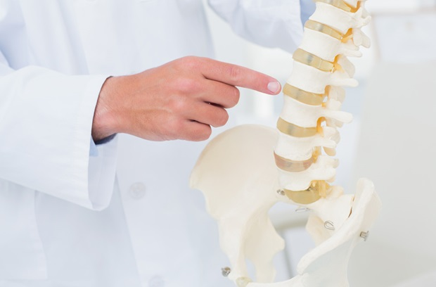 doctor_pointing_to_spine_model