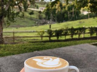 Colaitos PR: café de Utuado por una joven cidreña