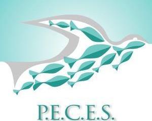 P.E.C.E.S. trabaja para los puertorriqueños