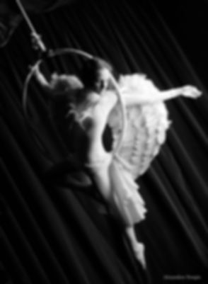 Angel_Seven_Cabaret circus.jpg