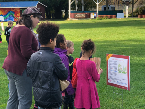 Why hosting a StoryWalk is the perfect COVID-safe activity for your community