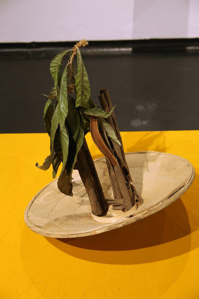 Installation: Colonial hat, Loquat leafs, cinnamon, Turmeric