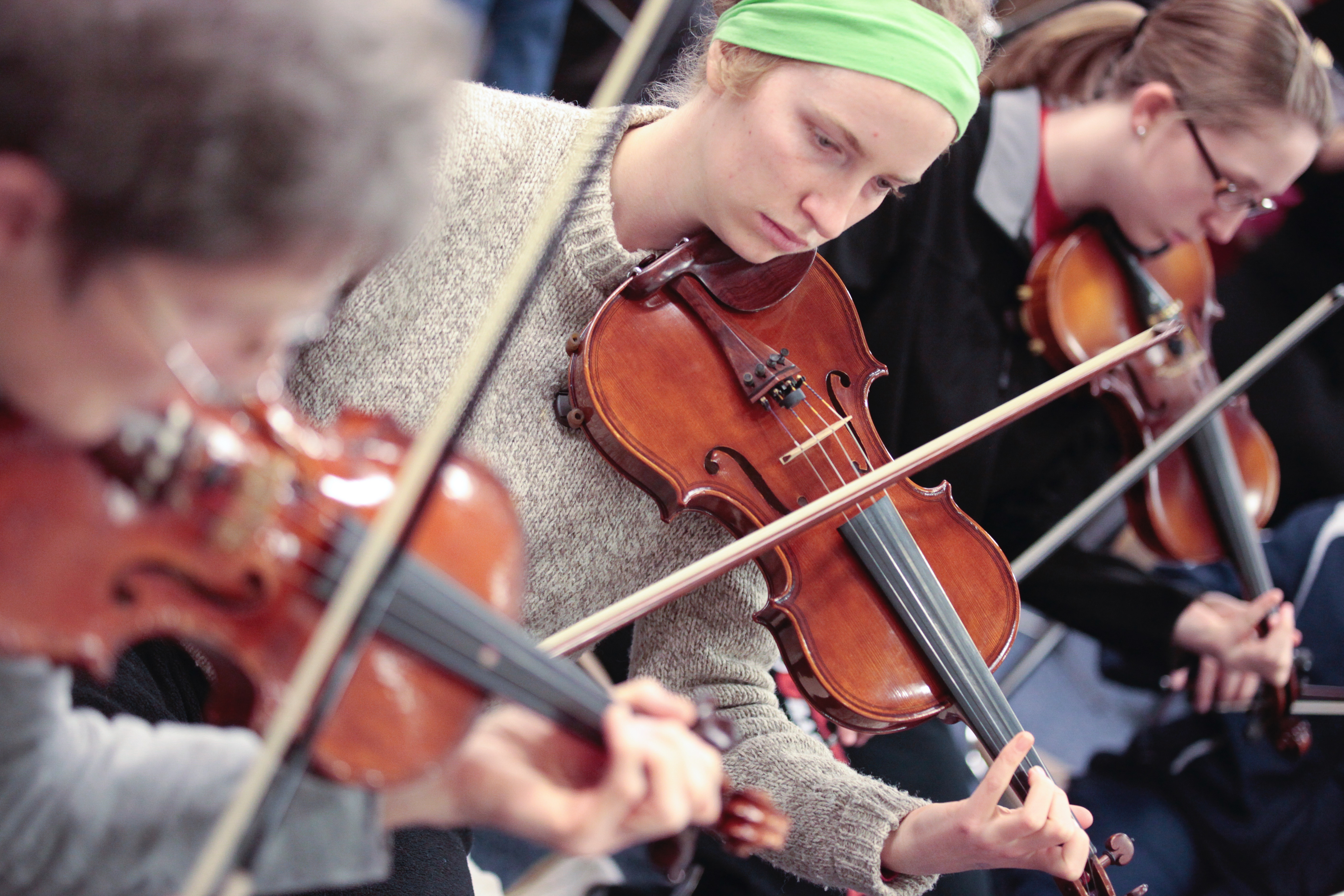 violins5