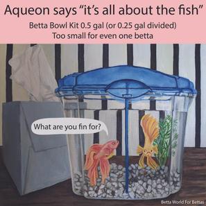 Aqueon Betta Bowl Kit 0.5 gal (0.25 per fish)