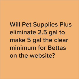 Pet Supplies Plus Betta fish care guidance