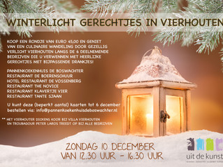 Winterlicht in Vierhouten!