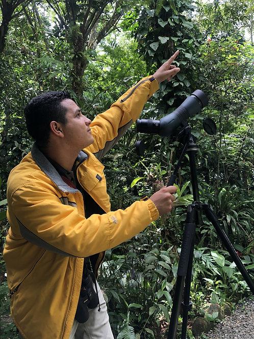 Tour de Aves Solo Nacionales & Residentes