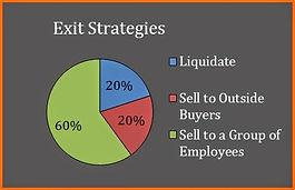 Exit Strategies Pie Chart.jpg