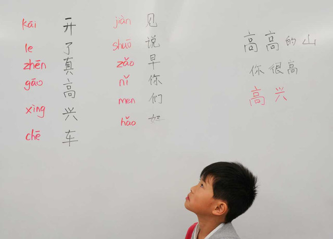 Chinese Language School