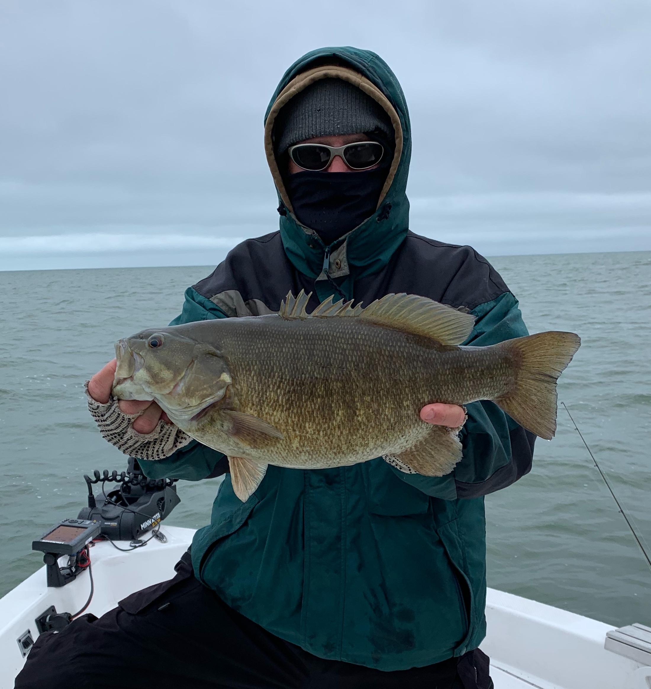 2019 Lake St Clair