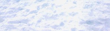 snownewyork