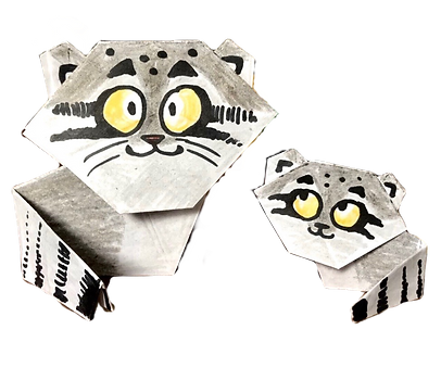 pallascatorigami_edited_edited.png