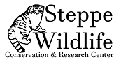 steppewildlife-outline.png