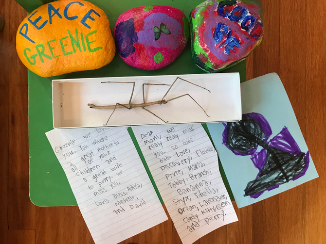 Essay: Funeral for a Stick Bug