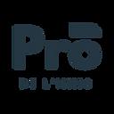 PRO DE L'IMMO-3.png