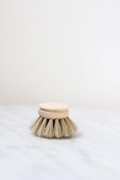 Everyday Dish Brush - replacement head