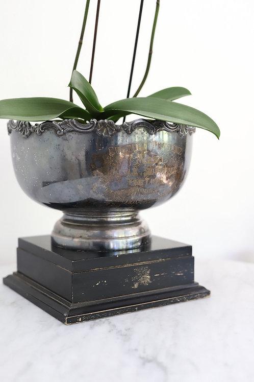 Trophy Bowl on Pedestal
