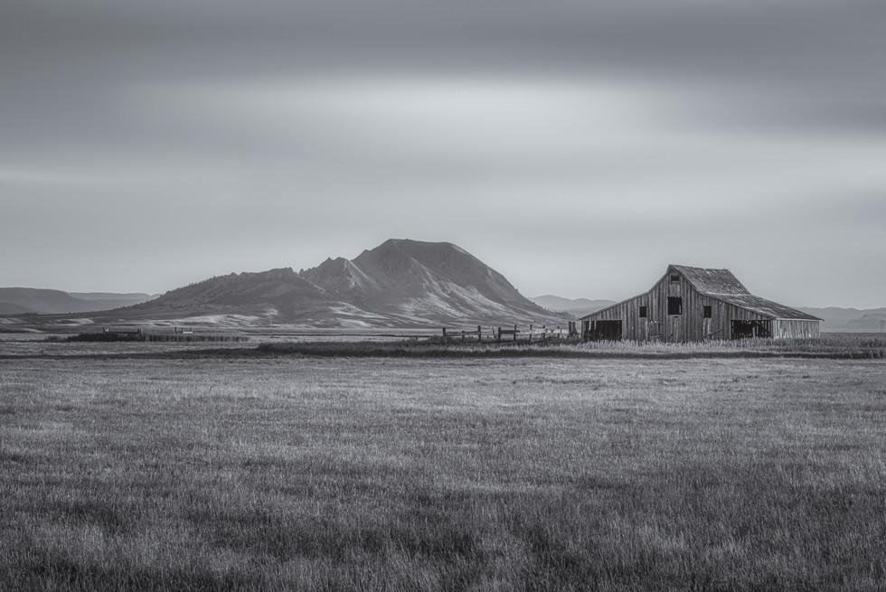 Blessed Prairie