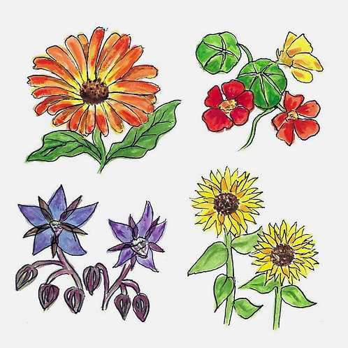 The Feed You Flowers - edible flowers (Mar-May)