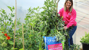 Natural world products helps Lisburn families in isolation improve mental health through gardening