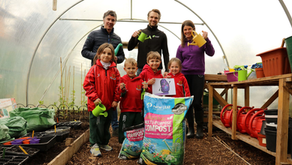 Primary School Children to Get Growing in Purple Potato Project