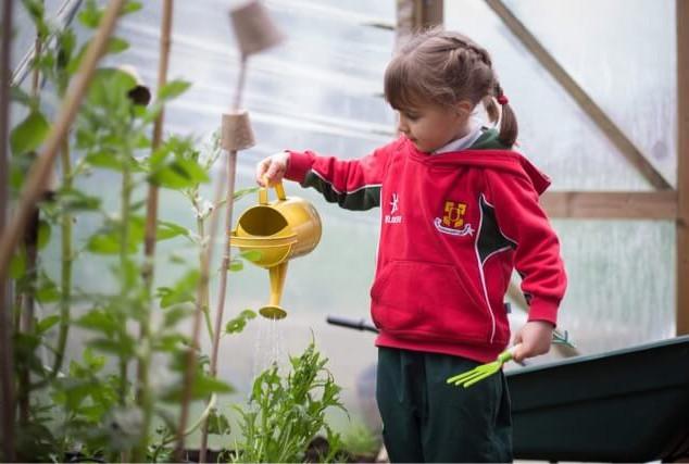 Kindergarden Cooks Summer School (4).jpe