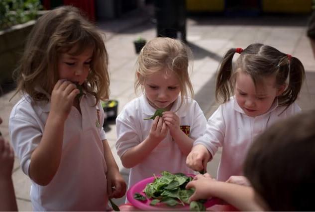 Kindergarden Cooks Summer School (5).jpe