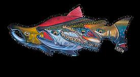 Alaska Kenai Fishing For Fun Logo