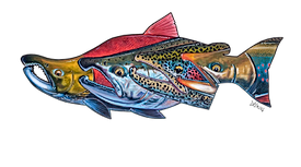 Alaska Kenai Fishing For Fun Logo