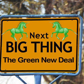 Socialism? Environmentalism? Or Both?