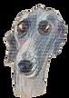 dog walking in stoke newington dog walking in hackney