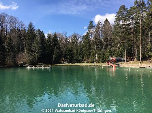 Waldseebad Königsee/Thüringen - Das Naturbad
