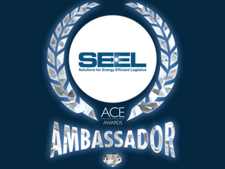 SEEL, LLC Named 2020 Supplier of the Year by the Michigan Minority Supplier Development Council