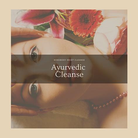 Ayurvedic Cleanse / Detox