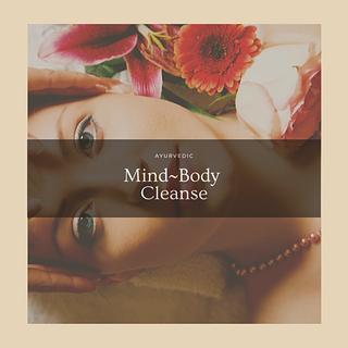 Mind~Body Reset